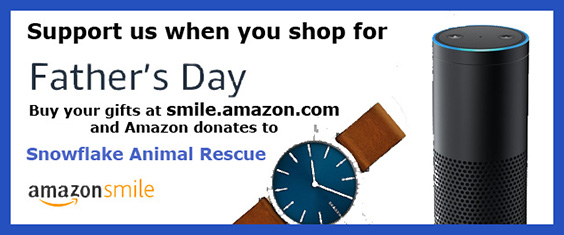 Amazon Smile for Father's Day